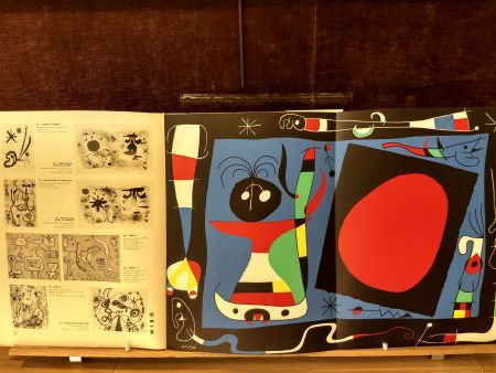 Illustrated Book Miró - 10 ans edition