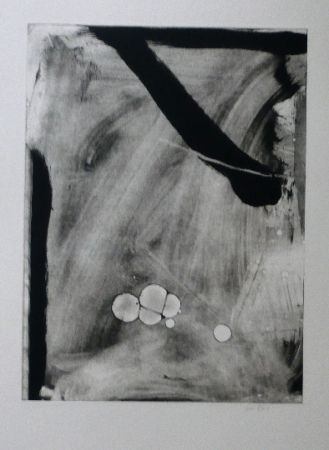 Etching And Aquatint Bird - Abstract 10