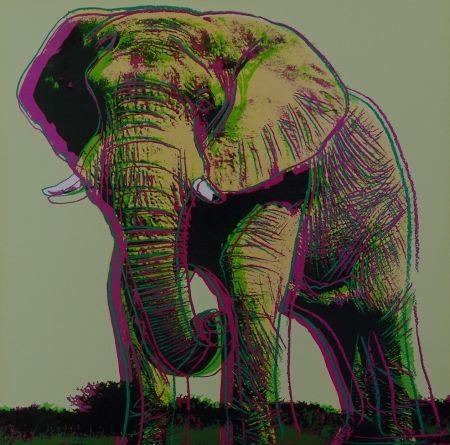 Screenprint Warhol - African Elephant