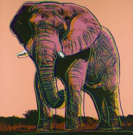 Screenprint Warhol - African Elephant (FS II.293)