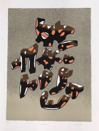 Lithograph Le Witt - Album internacional