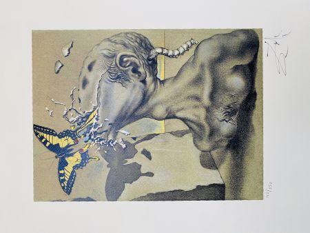 Lithograph Dali - Allegoria di Lama