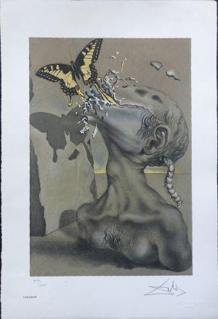 Lithograph Dali - Allegoria di Lama INTERGRAFICA 38X56