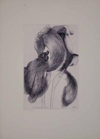 Etching And Aquatint Baskin - An Iris for Lisa