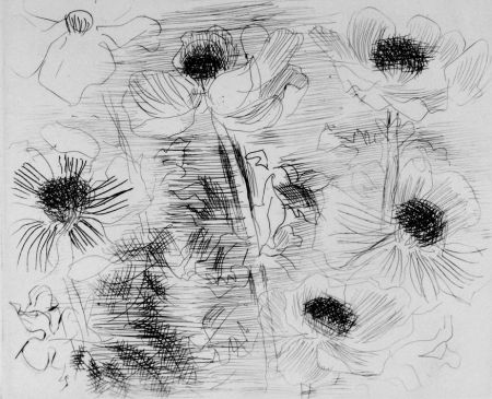 Engraving Dufy - Anemones
