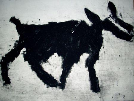 Carborundum Haas - Animal
