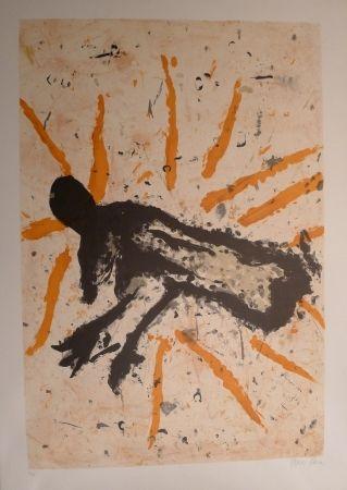 Lithograph García Sevilla - Animalia