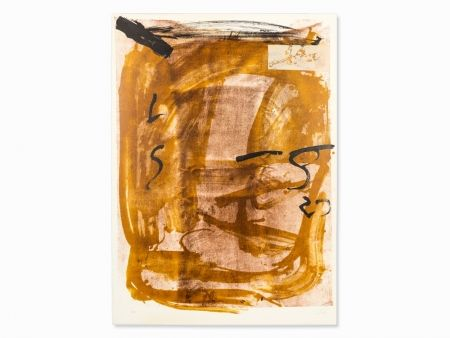 Lithograph Tàpies - Apparations