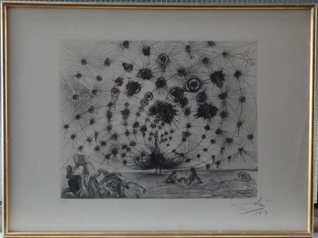 Etching And Aquatint Dali - Argus