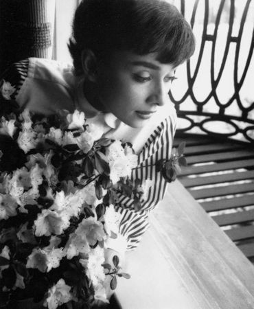 Photography Willoughby - Audrey Hepburn window