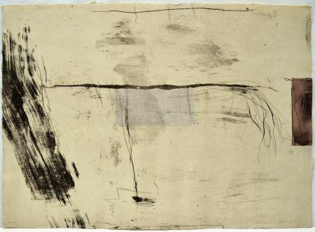 Engraving Riera I Aragó - Avió amb cua de cavall