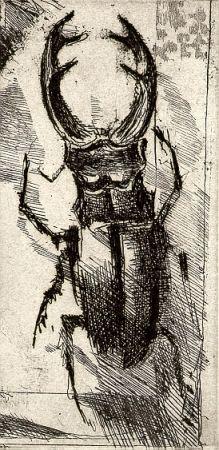 Illustrated Book Calandri - Ballades Et Rondeaux Du Testament Villon