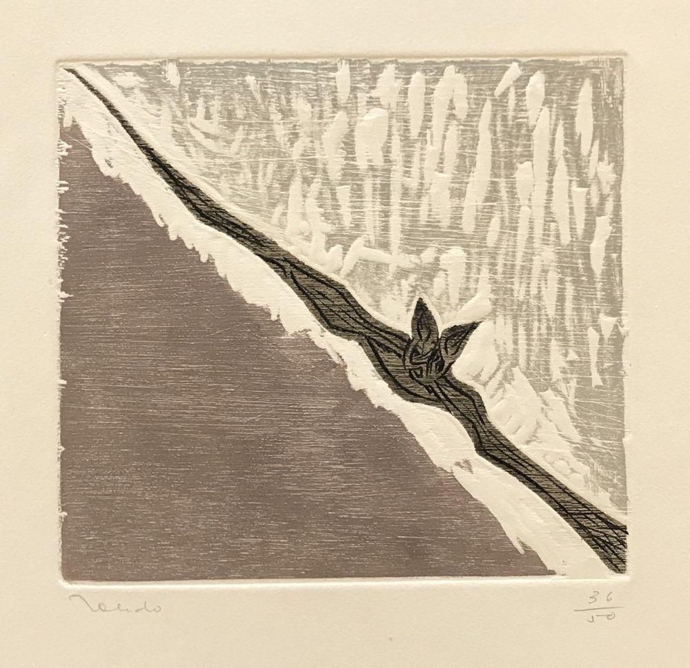 Etching Toledo - Bat in Flight