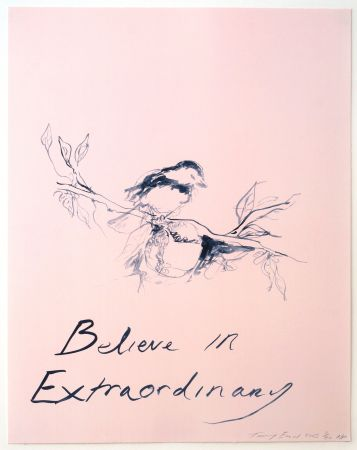 Lithograph Emin - Believe in Extraordinary
