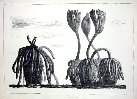 Lithograph Lionni - Betula tormens
