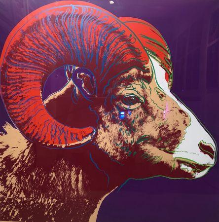 Screenprint Warhol - Bighorn Ram Tp (Fs Ii.302)