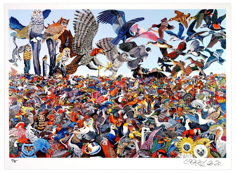 Numeric Print Erro - Birdlandscape