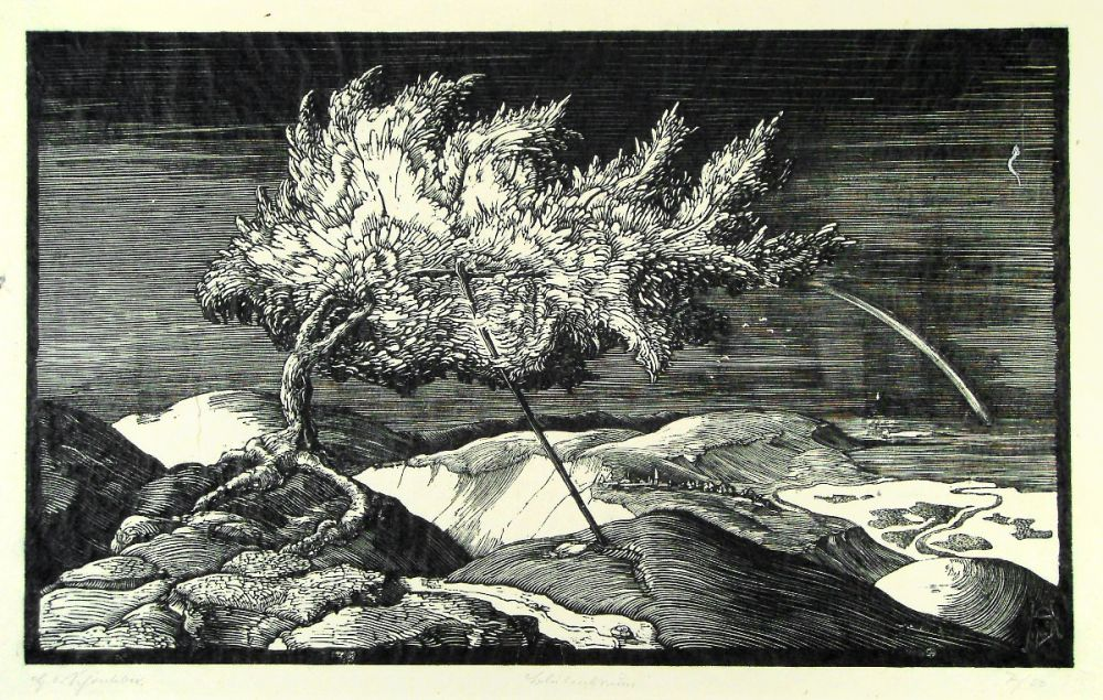 Woodcut Schönleber - Blütenbaum im Donautal (Flowering tree in the Danube valley)