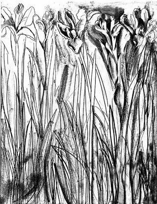 Etching Dine - Black & White Flowers I
