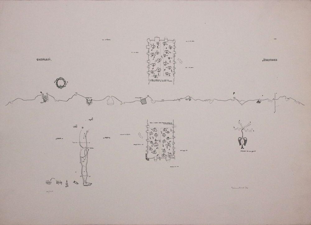 Lithograph Baruchello - Campioni
