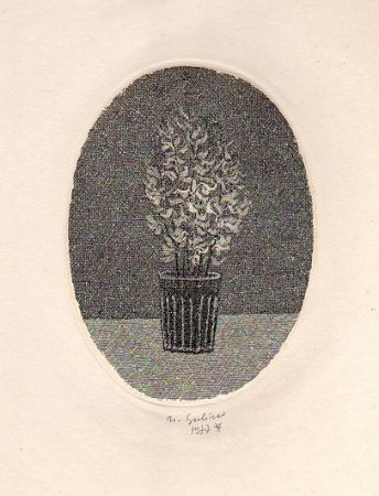 Illustrated Book Gulino - Canti