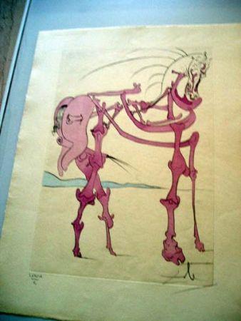 Etching Dali - Cheval En Rose (Quevedos Visioner)