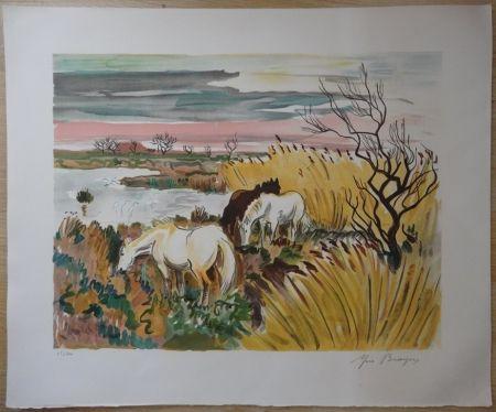 Lithograph Brayer - Chevaux en Camargue