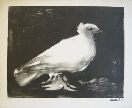 Lithograph Picasso - Colombe
