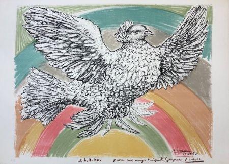 Lithograph Picasso - Colombe volant