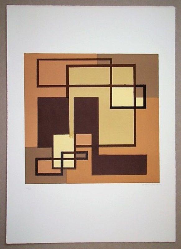 Lithograph Radice - Compositione astratta marrone