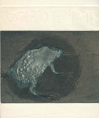 Illustrated Book Guarienti - Concerto per rane