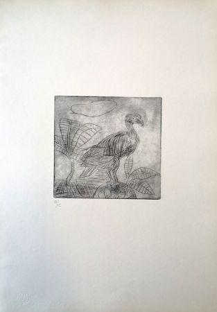 Drypoint Ligabue - Condor