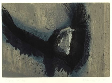 Etching And Aquatint O'donoghue - Crow