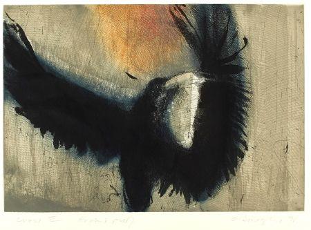 Etching And Aquatint O'donoghue - Crow II