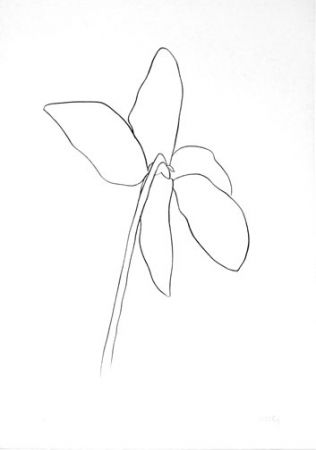Lithograph Kelly - Cyclamen IV