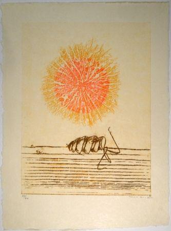 Illustrated Book Ernst - Die Bedeutung des Schönen in der exakten Naturwissenschaft / The meaning of beauty in exact natural science / Mit drei Original-Farblithographien von Max Ernst