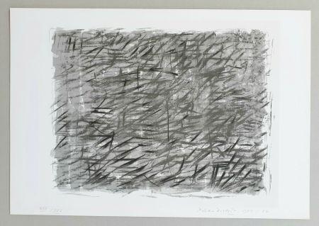 Screenprint Dorazio - Disegno