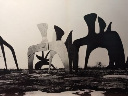 Illustrated Book Calder - DLM 190