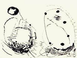 Lithograph Brown - Double shape