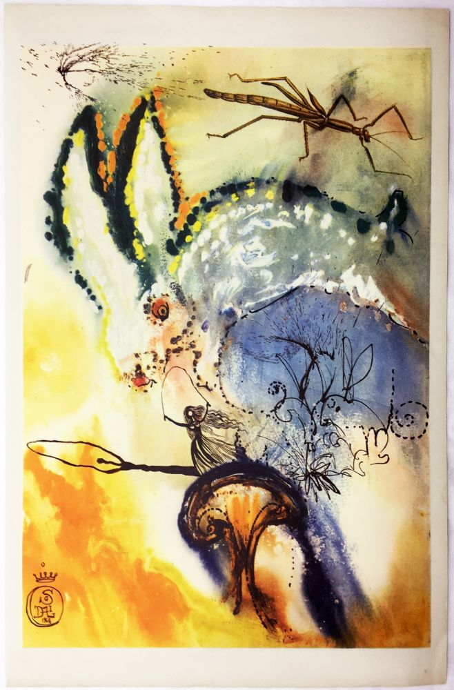 Rotogravure Dali - DOWN THE RABBIT HOLE (From Alice in Wonderland. New-Yok 1969).