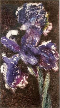 Lithograph Kentridge - Dutch Iris II