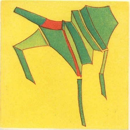 Illustrated Book Perilli - Ebbrezza di placamenti
