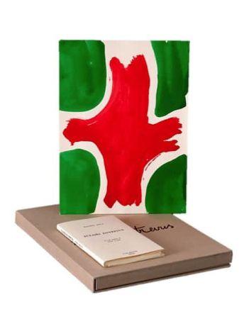 Illustrated Book Viallat - ECLAIRS ENTREVUS, 1991