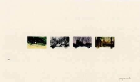 Lithograph Perejaume - El bosc a casa-2