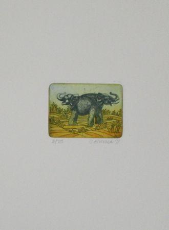 Etching And Aquatint Franke - Elefanten