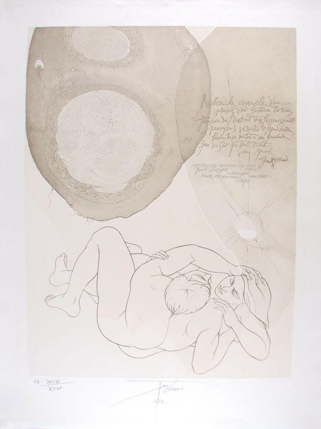 Lithograph Trémois - Envol VII