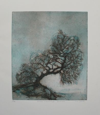Etching And Aquatint Steidle - Essener Landschaft Heidhausen