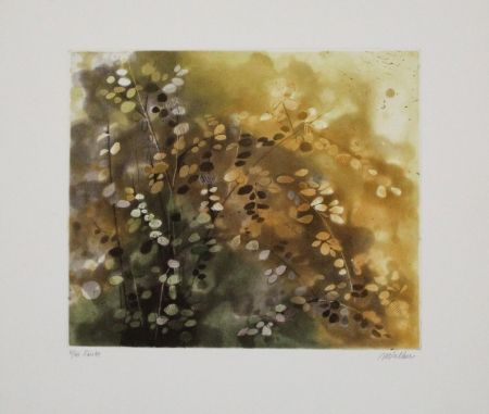 Etching And Aquatint Walker - Fairlee