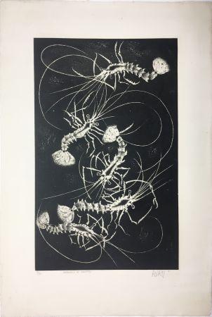 Aquatint Avati - Farandole de crevettes (1958)