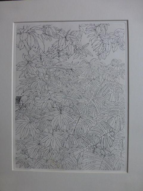 Engraving Szafran - Feuillages ,1977